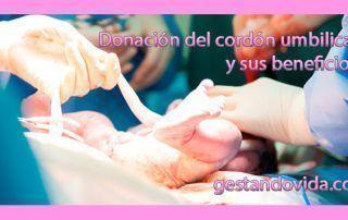 Donación del cordón umbilical y sus beneficios